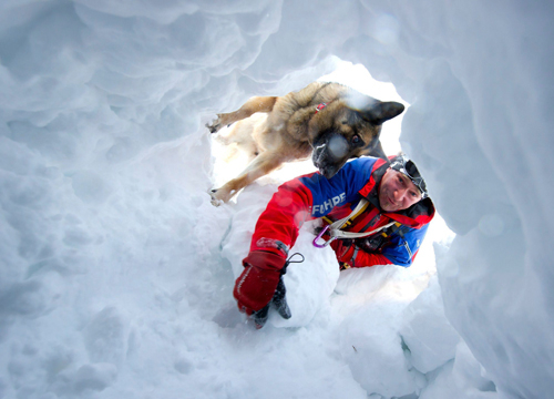 Faces and Places - 1.18.2012 Thomas Merkel, a member of mountain rescue services, and his dog Jessy participate in a mock rescue after an avalanche, in Garmisch-Partenkirchen, Germany.