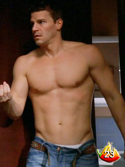 The Sexiest Men on TV - #23: David Boreanaz from