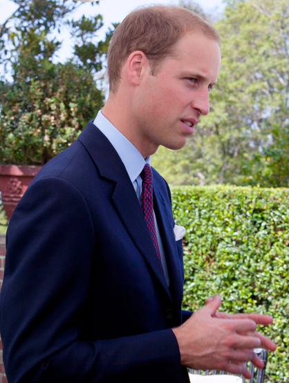 Stars Who Are Younger Than They Look. - Prince William is 29 years old.